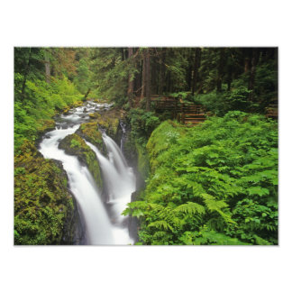 Sol Duc Falls in Olympic National Park in Photographic Print