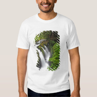 Sol Duc Falls in Olympic National Park in Tshirts