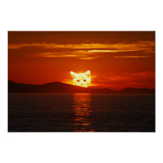 SOLAR CAT POSTER