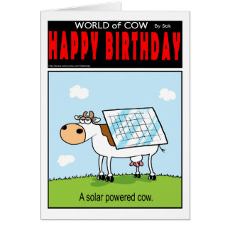Solar Cows Card