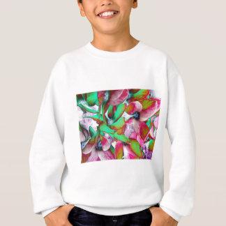 solegreen sweatshirt