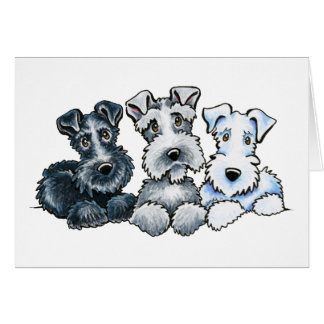 Solid Schnauzers Greeting Card