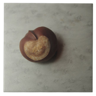 Solitary Conker Ceramic Tile