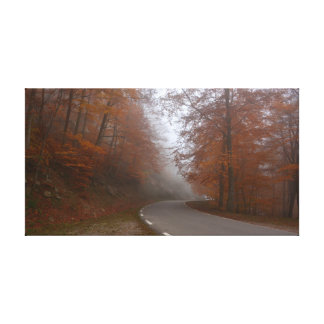 Solitary highway in autumnal forest canvas print