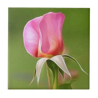 Solitary pink rose bud tile