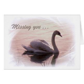 Solitary Swan Card