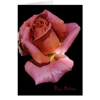 Solitude Rose Card