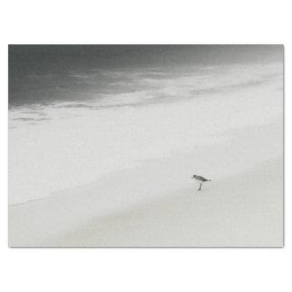 SOLO SANDPIPER Peaceful Gray Seashore Solitude Tissue Paper