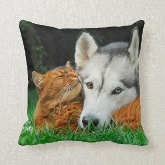 Somali cat and Siberian Husky cute friends huddle Cushion