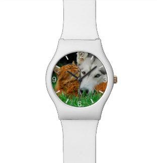 Somali Cat Siberian Husky Cute Friends  dial-plate Watch