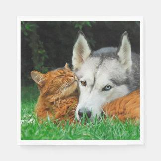 Somali Cat Siberian Husky Cute Friends Huddle Love Disposable Napkin