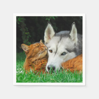 Somali Cat Siberian Husky Cute Friends Huddle Love Disposable Serviette