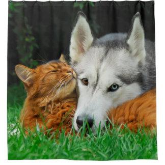 Somali cat Siberian Husky cute friends huddle -Tub Shower Curtain