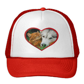 Somali Cat Siberian Husky Cute Love Heart - cup Cap