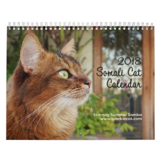 Somali Cat, Starring Summer Samba 2018 Wall Calendars