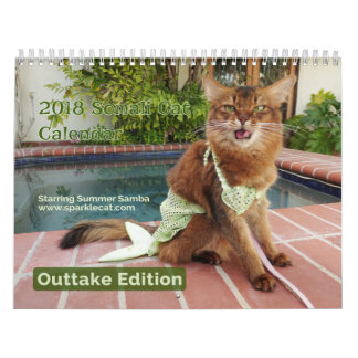 Somali Cat, with Summer Samba Outtake Edition 2018 Wall Calendar