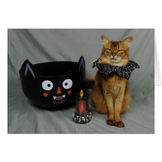 Somali Halloween Cat Card