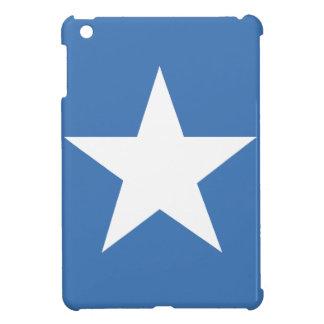 Somalian flag case for the iPad mini