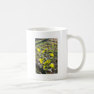 Some autumn green leaves coffee mug