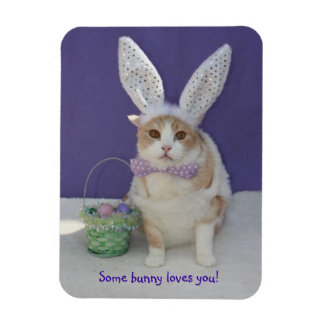 Some Bunny Loves You Easter Kitty Cat Magnet