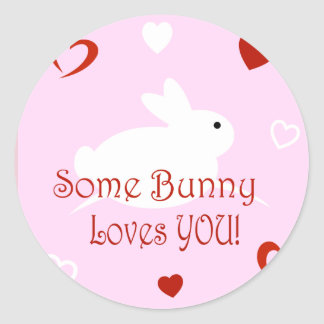 Some Bunny Loves You Valentine's Day Stickers