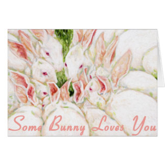 Some Bunny Loves You - White Rabbits Card