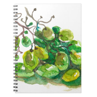 Some grapes notebook