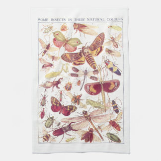 Some Insects In Their Natural Colors Tea Towel