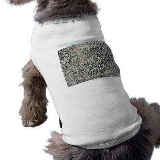 Some weird lichens on a rock dog tee shirt