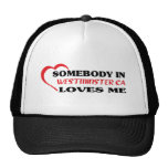 Somebody in Westminster loves me t shirt Hats