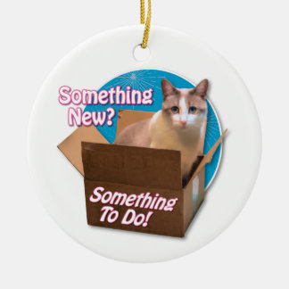 Something New? Ceramic Ornament