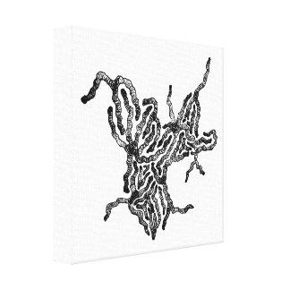Something Strange Canvas Print