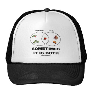 Sometimes It Is Both (Vegetables Fruits Attitude) Mesh Hat