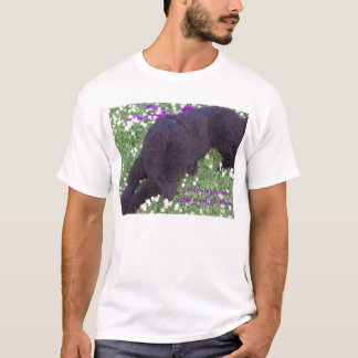 Sometimes you hav... T-Shirt