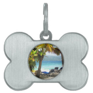 Somewhere in paradise pet tag