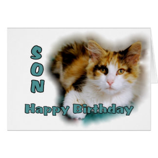 Son Happy Birthday Calico Cat Card