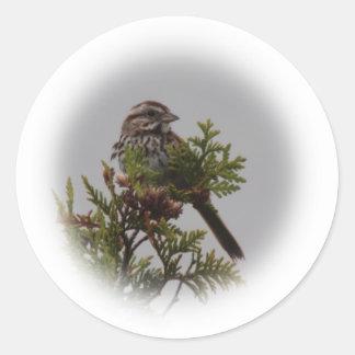 Song Bird Round Sticker