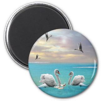 Song Of The White Swan, Magnet