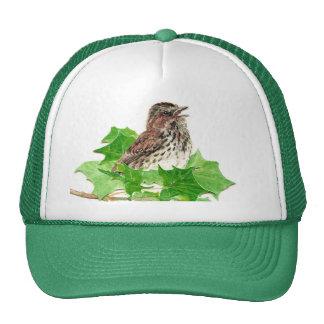 Song Sparrow, Cute Bird, Birder, Nature Cap