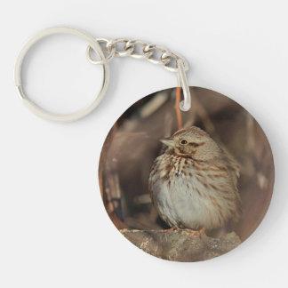 Song Sparrow Key Ring