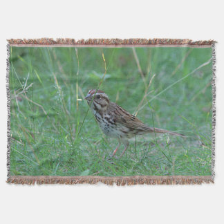 Song sparrow throw blanket