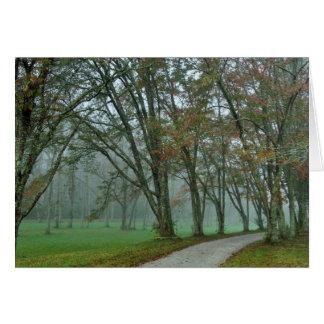 Songbird Trail II Card