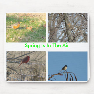 Songbirds, Spring Is In The Air Mouse Pad