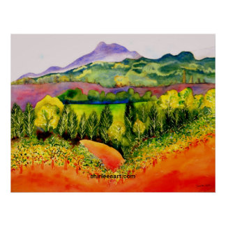 Sonoma County Vineyard Poster