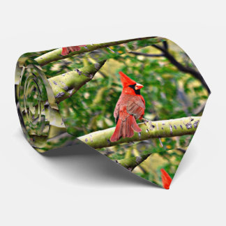 Sonoran Cardinal Men's Tie