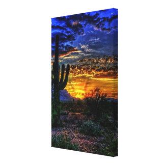 sonoran desert canvas print
