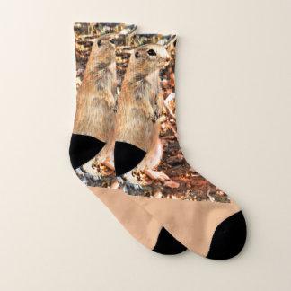 Sonoran Ground Squirrel Unisex Socks 1