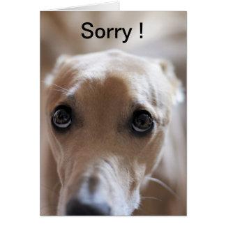 Sorry ! card