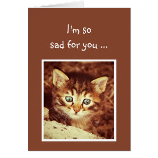 Sorry so Sad for You Encouraging Kitten Animal Card