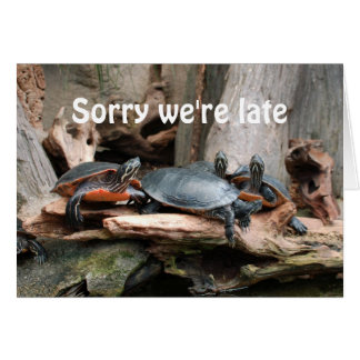 Sorry we're late Turtles birthday greeting card